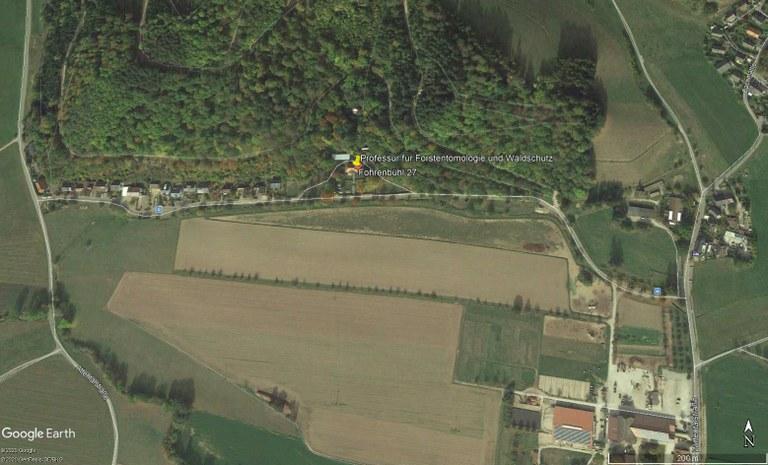 Standort Forstentomologie 2